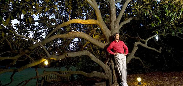 Branching out: Engineering professor and theory conceiver Adrian Bejan. Chris Hildreth