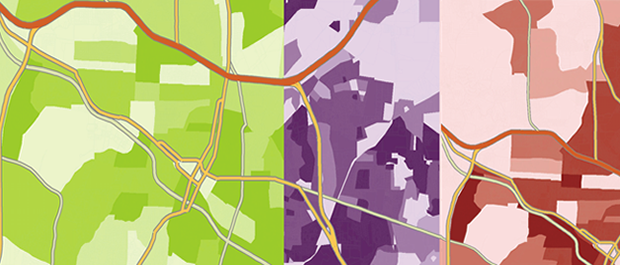 Building a case: CEHI maps overlay demographic data, property-tax records, and health information to determine at-risk neighborhoods. In details from individual maps, left, more specific data emerge about households receiving public assistance (green), children under six living in poverty (purple), and racial breakdown of owners and renters (brown).