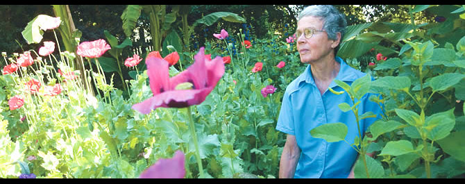 Blossoming: Amid spring poppies, Goodwin surveys Montrose's natural wonders. Photo by Les Todd