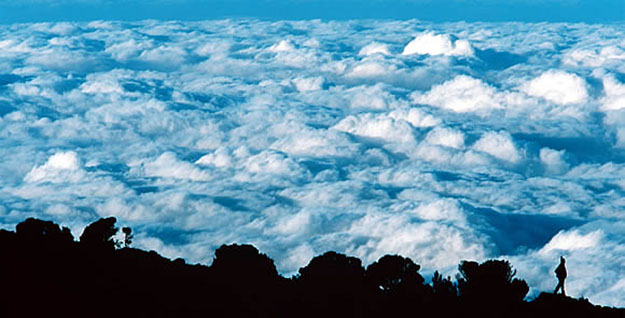 Above the clouds: halfway up Mt. Kilimanjaro. Chris Hildreth