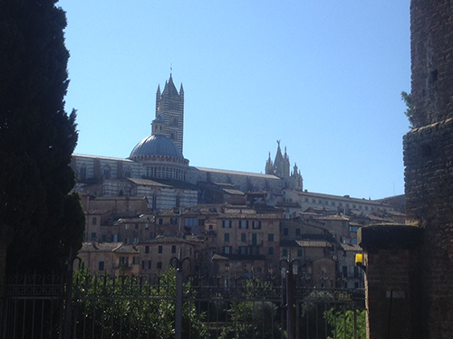Siena skyline (Duomo and bell tower in the background)
