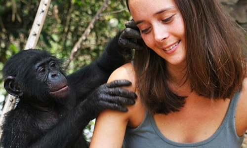 Meet the Bonobos: Will Their Culture Save Us